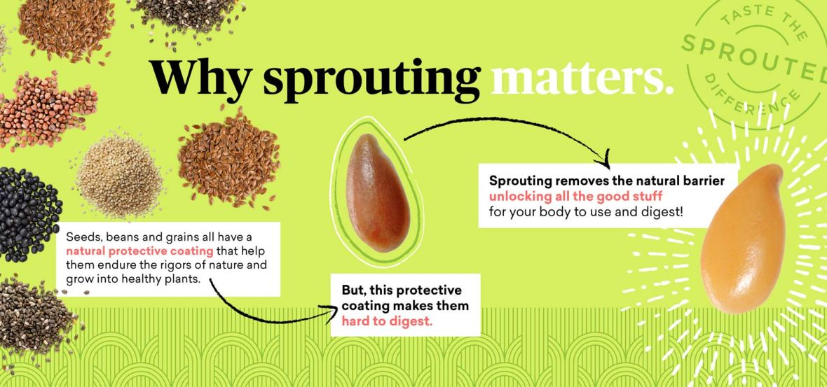 Sprouting-Infograph_1600x750_3-4_v2